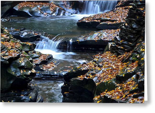 Autumn Cascade Greeting Card by Frozen in Time Fine Art Photography