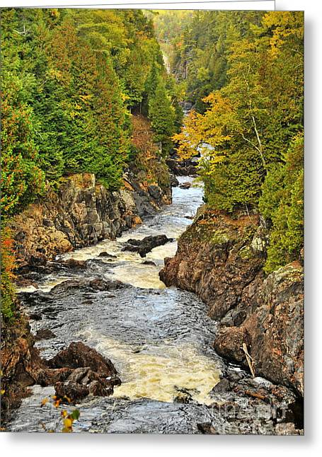 Nature Photograph Greeting Cards - Autumn Channel Greeting Card by Michael Cummings