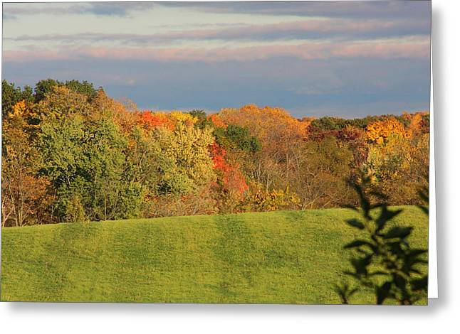 Indiana Autumn Greeting Cards - Autumn Color Greeting Card by Bill Jonas