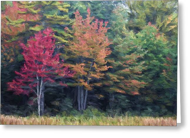 Leaf Peepers Greeting Cards - Autumn Color Painterly Effect Greeting Card by Carol Leigh