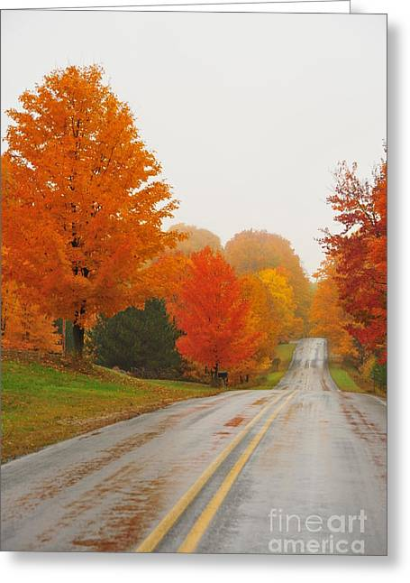 Fall Landscape Greeting Cards - Autumn Color Tour 11 Greeting Card by Terri Gostola