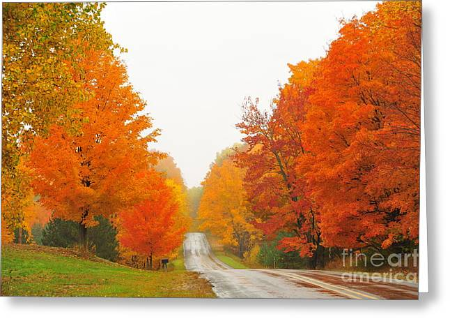 Lakes Greeting Cards - Autumn Color Tour 8 Greeting Card by Terri Gostola