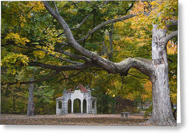 Indiana Autumn Greeting Cards - Autumn Colors at Indiana University Greeting Card by Shelley Dennis