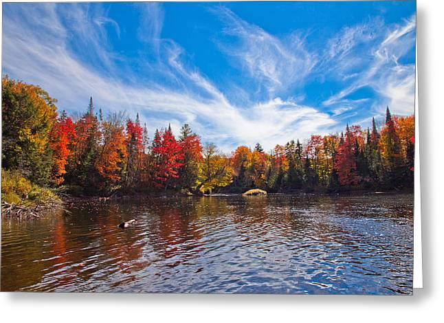 Old And New Greeting Cards - Autumn Colors Below the Lock and Dam Greeting Card by David Patterson