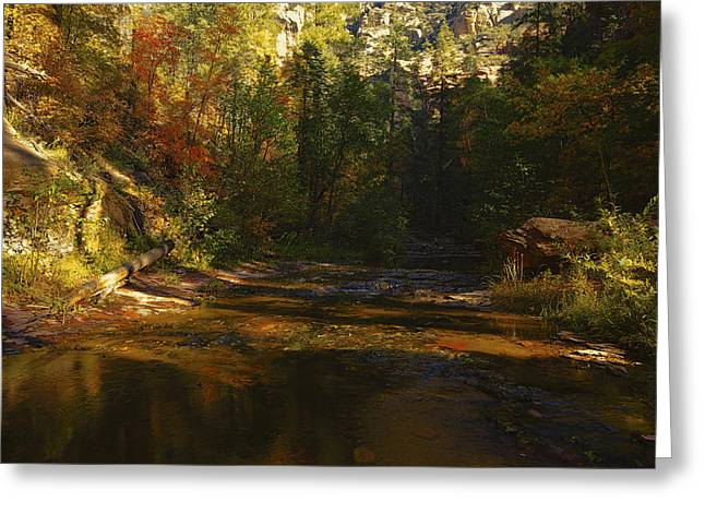 West Fork Greeting Cards - Autumn Colors by the Creek  Greeting Card by Saija  Lehtonen
