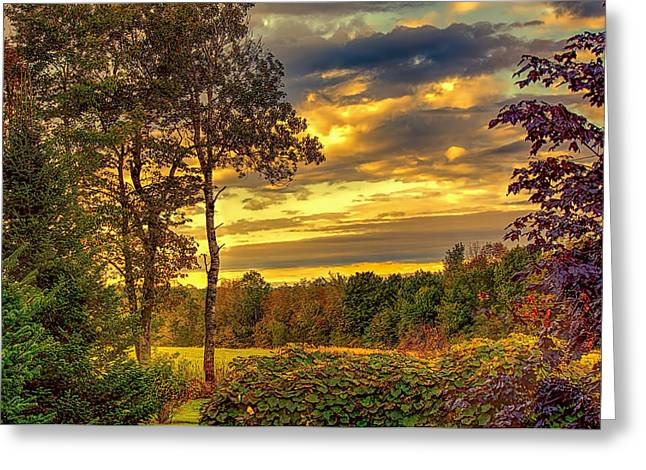 Fall Grass Greeting Cards - Autumn Colors Greeting Card by Fred Larson