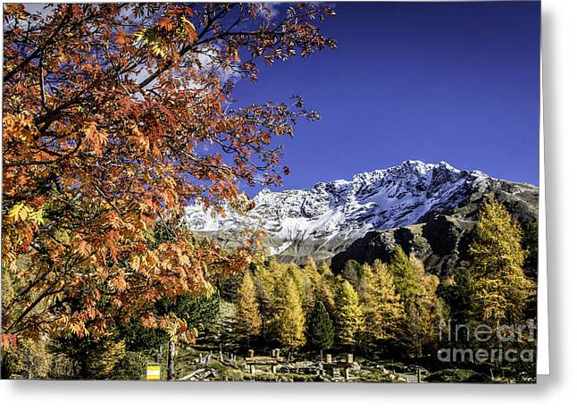Pontresina Greeting Cards - Autumn Colors In Switzerland Greeting Card by Timothy Hacker