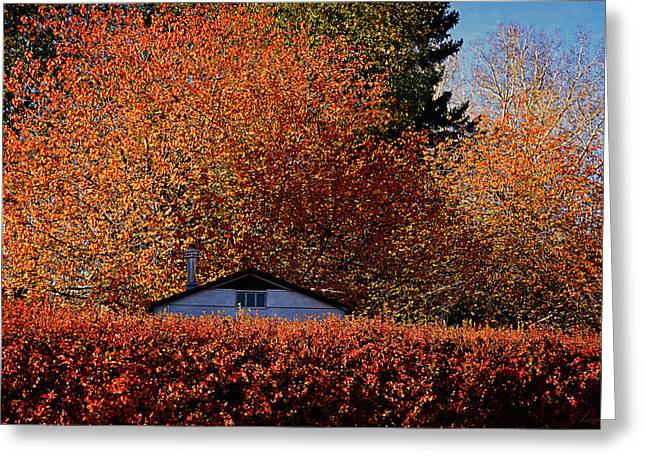 Garden Scene Digital Greeting Cards - Autumn Colors Greeting Card by Maria Angelica Maira