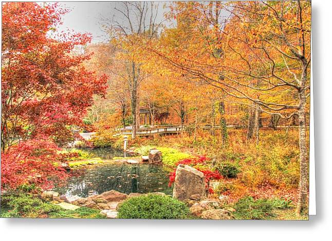 Fall Colors Greeting Cards - Autumn Colors of Georgia Greeting Card by Nancy Wolfe