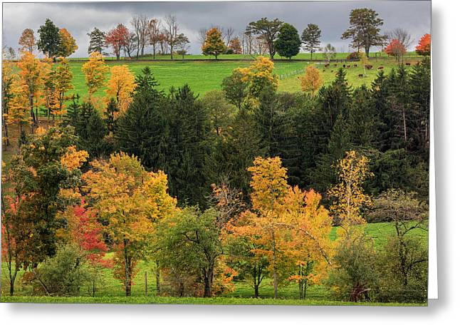 Farms Greeting Cards - Autumn Country Greeting Card by Bill  Wakeley