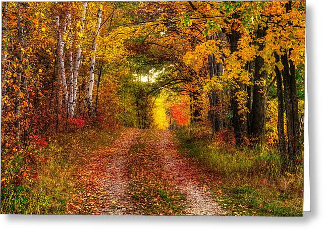 Nikkor Greeting Cards - Autumn Country Lane - Horizontal Greeting Card by Cory Christensen