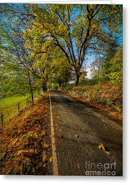Winter Roads Greeting Cards - Autumn Country Road Greeting Card by Adrian Evans
