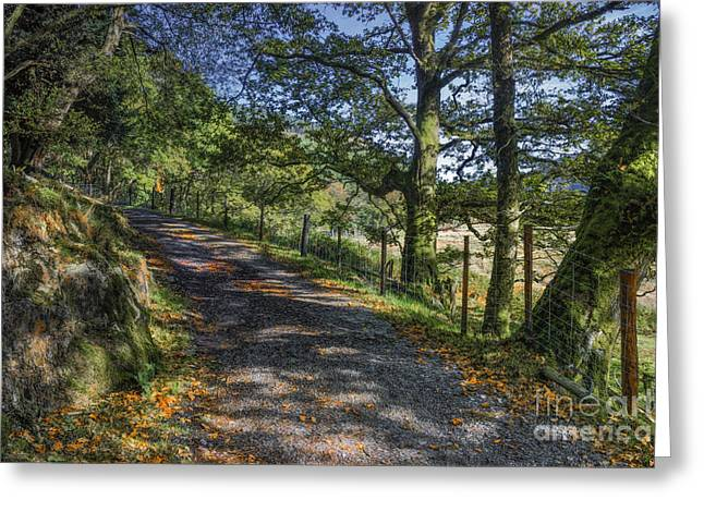 Autumn Prints Greeting Cards - Autumn Countryside Greeting Card by Ian Mitchell