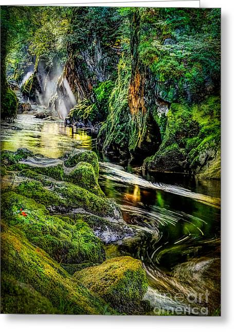 Moss Digital Art Greeting Cards - Autumn Creek Greeting Card by Adrian Evans