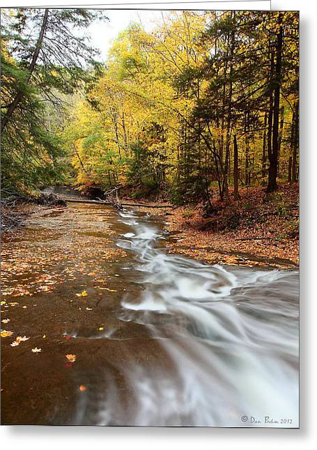 Ohio Pyrography Greeting Cards - Autumn Creek Greeting Card by Daniel Behm