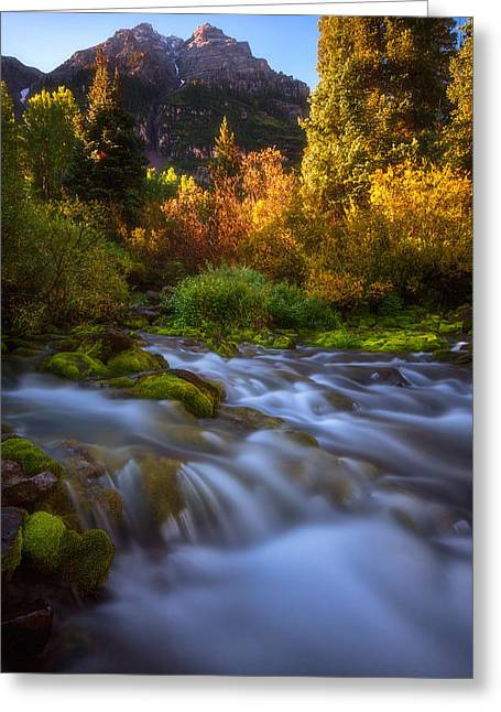 Autumn Prints Photographs Greeting Cards - Autumn Creek Greeting Card by Darren  White