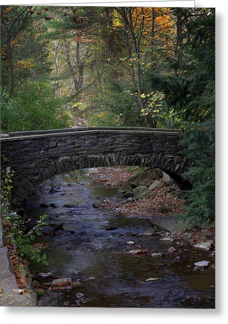 Autumn Creek Greeting Card by J Allen