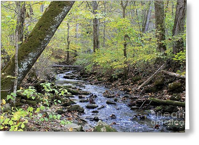 Southern Indiana Autumn Photographs Greeting Cards - Autumn Creek Greeting Card by Jennifer Snelling