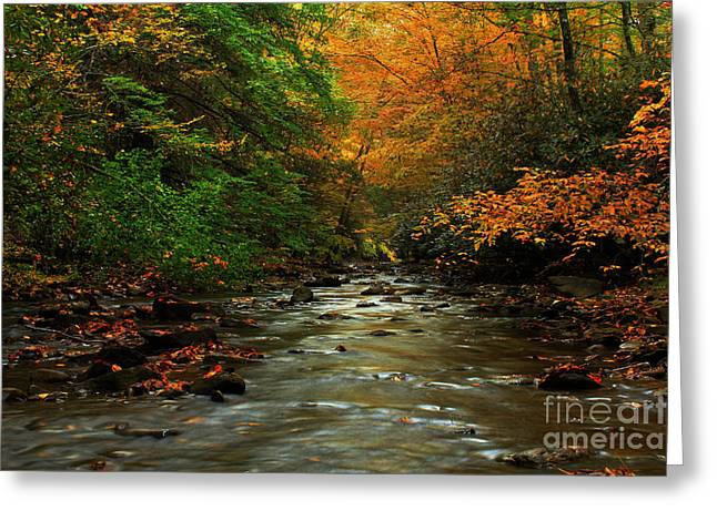 Autumn Creek Greeting Card by Melissa Petrey