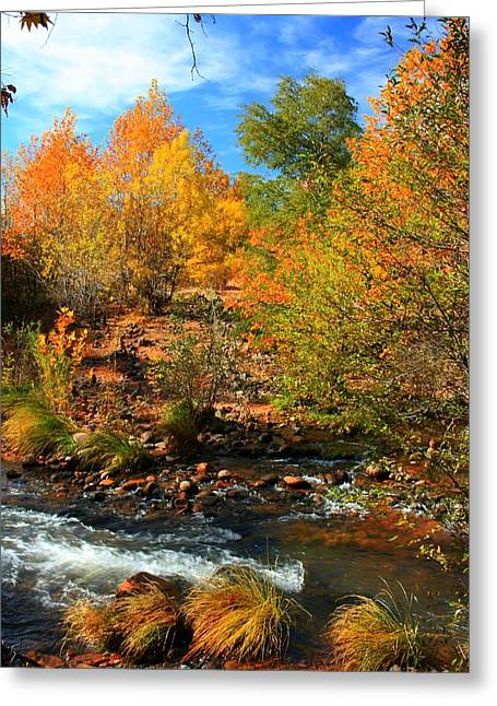 Red Rock Crossing Reliefs Greeting Cards - Autumn Creek Greeting Card by Miles Stites
