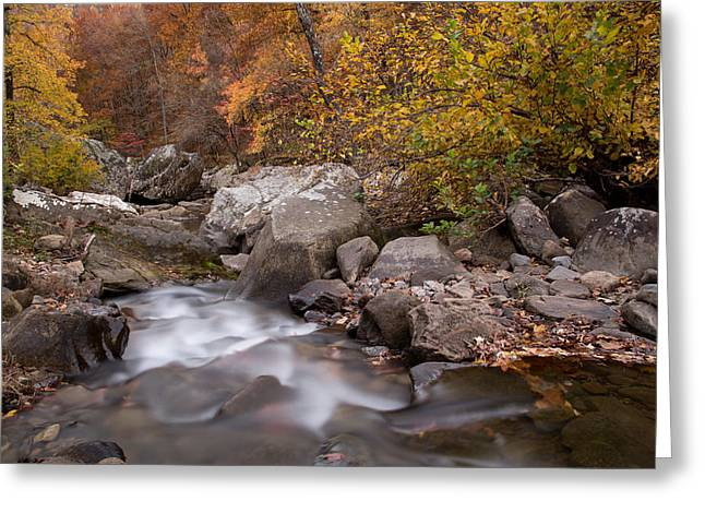 Richland Creek Greeting Cards - Autumn Current Greeting Card by Matthew Parks