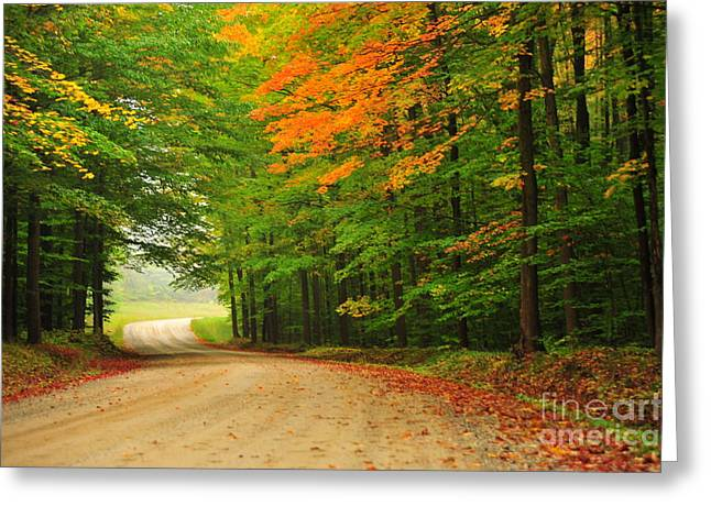 Fall Trees Greeting Cards - Autumn Curve Ahead Greeting Card by Terri Gostola