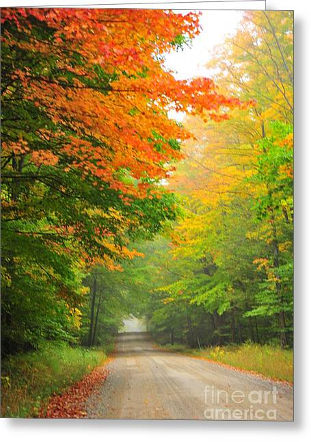 Rustic Greeting Cards - Autumn Dawn Greeting Card by Terri Gostola