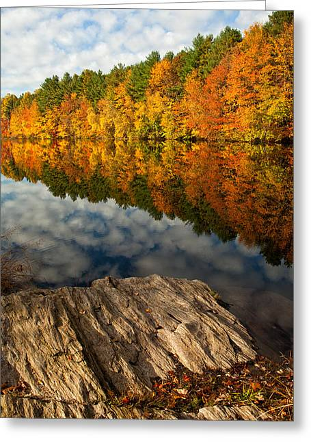 Autumn Morning Greeting Cards - Autumn Day Greeting Card by Karol  Livote