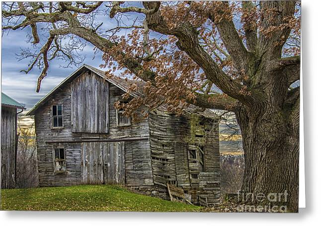 Barn Yard Greeting Cards - Autumn  Day On The Farm Greeting Card by JRP Photography