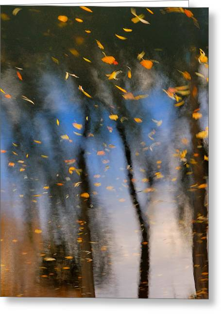 Color Bending Greeting Cards - Autumn Daze - Abstract Reflection Greeting Card by Steven Milner