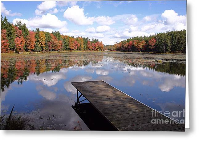 Promised Land Greeting Cards - Autumn Dock Greeting Card by David Rucker