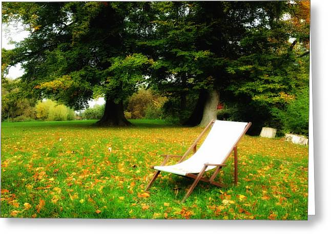Lawn Chair Greeting Cards - Autumn Dream Greeting Card by Mountain Dreams