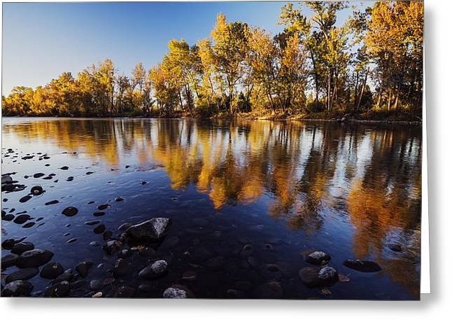 Quite Greeting Cards - Autumn evening along Boise River Greeting Card by Vishwanath Bhat
