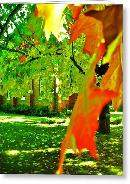 Fall Photos Mixed Media Greeting Cards - Autumn Fall Greeting Card by Tim McCrohan