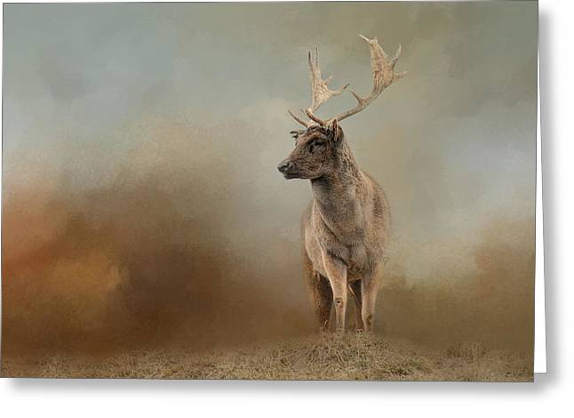Autumn Fallow Buck Greeting Card by Jai Johnson