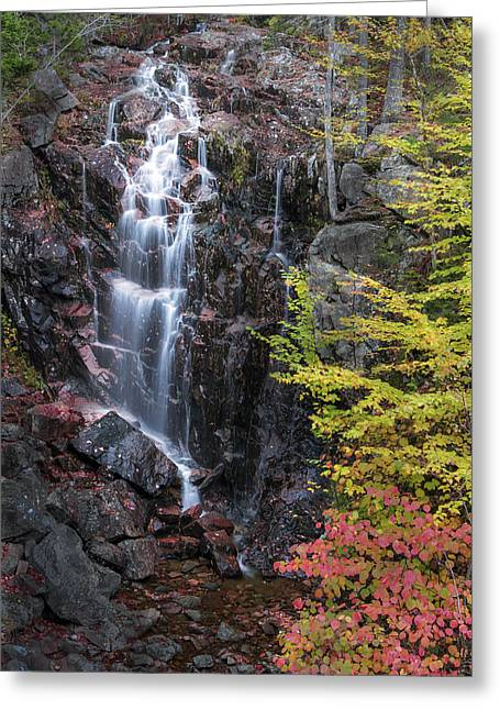 Color Colorful Greeting Cards - Autumn Falls Away Greeting Card by Jon Glaser