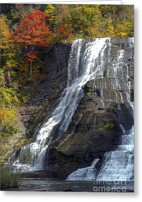 Ithaca Greeting Cards - Autumn Falls Greeting Card by Bob Phillips