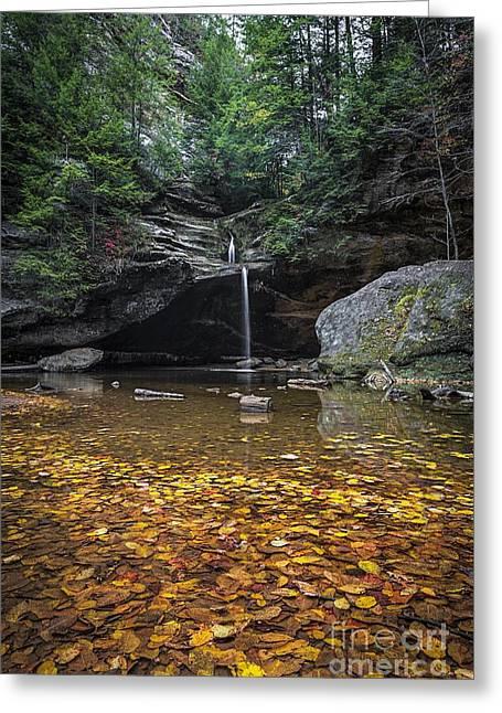 Autumn Falls Greeting Card by James Dean