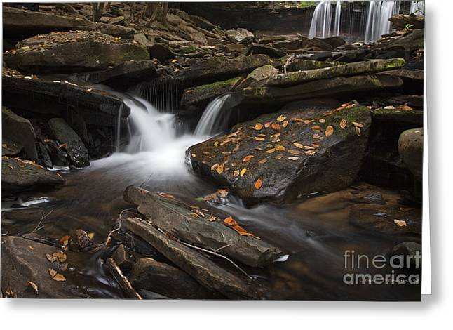 Russet Greeting Cards - Autumn Falls Greeting Card by John Stephens