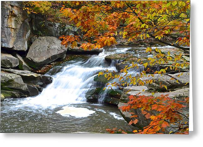 Tremendous Greeting Cards - Autumn Falls Greeting Card by Frozen in Time Fine Art Photography
