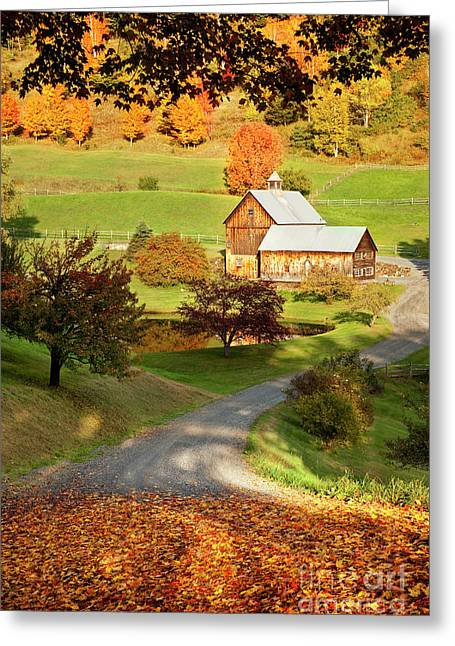 Sleepy Greeting Cards - Autumn Farm Greeting Card by Brian Jannsen