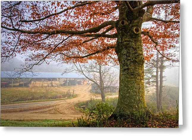 Autumn Farm Lane Greeting Card by Debra and Dave Vanderlaan