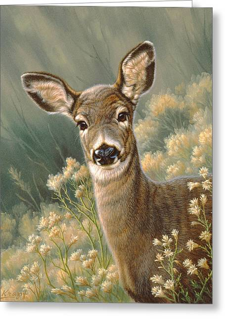 Fawn Greeting Cards - Autumn Fawn-Blacktail Greeting Card by Paul Krapf