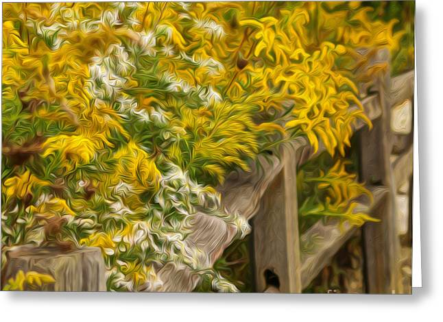 Autumn Fence Greeting Card by Brian Mollenkopf