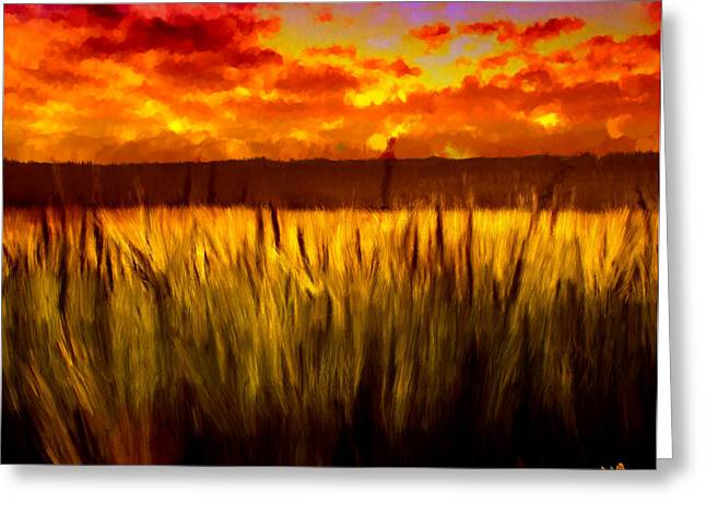 Gloaming Paintings Greeting Cards - Autumn Field at Sunset Greeting Card by Bruce Nutting