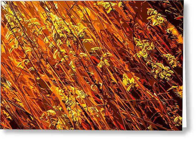 Hay Mixed Media Greeting Cards - Autumn Field Greeting Card by Brian Stevens