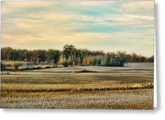 Fall Scenes Greeting Cards - Autumn Fields - Landscape Greeting Card by Jai Johnson