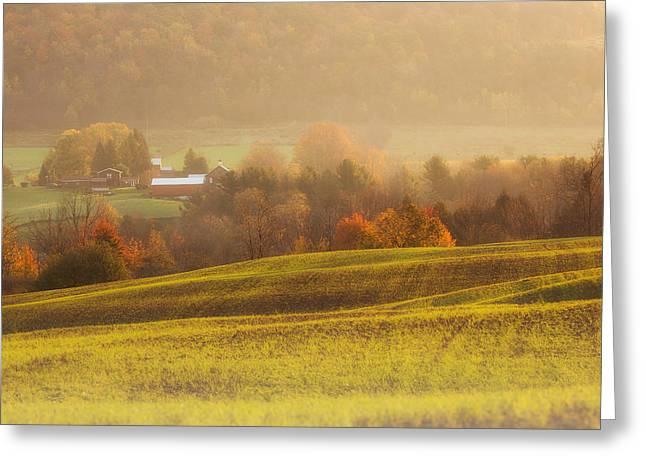 Autumn Fields Greeting Card by Michele Steffey