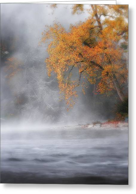 Ethereal Waterfalls Greeting Cards - Autumn Fog Greeting Card by Bill  Wakeley