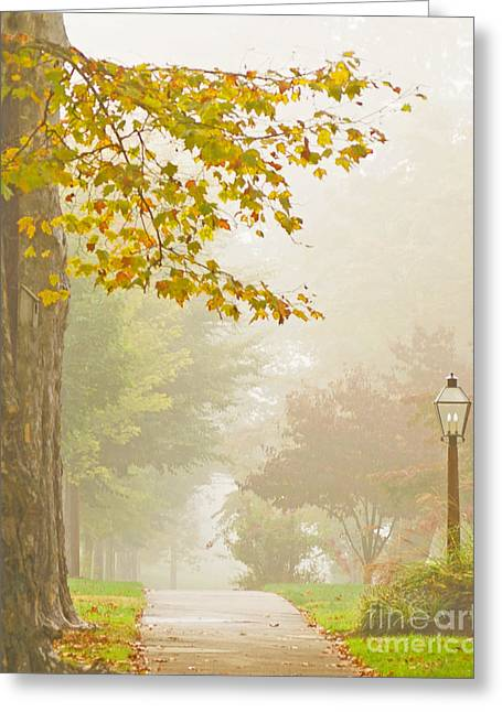 Autumn Fog Greeting Card by Rima Biswas